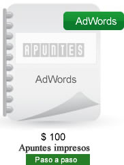 temario  curso adwords